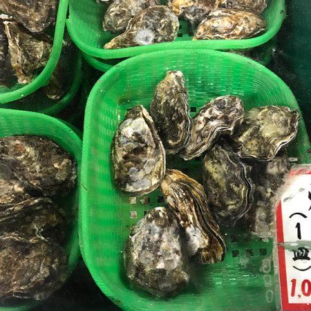 広島の牡蠣小屋
